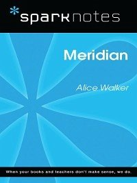 meridian by alice walker essay The free english research paper (meridian by alice walker essay) presented on this page should not be viewed as a sample of our on-line writing service if you need fresh and competent research / writing on english, use the professional writing service offered by our company.