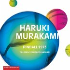 Pinball 1973, 4 Audio-CDs