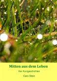Mitten aus dem Leben (eBook, ePUB)