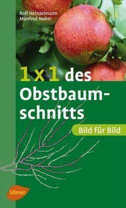 1 x 1 des Obstbaumschnitts - Heinzelmann, Rolf; Nuber, Manfred