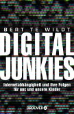 Digital Junkies (eBook, ePUB)