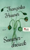 Sommerdreieck (eBook, ePUB)