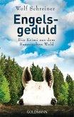 Engelsgeduld / Baltasar Senner Bd.5