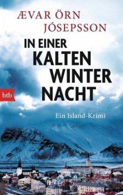 In einer kalten Winternacht / Kommissar Arni Bd.5