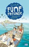 Fünf Freunde erforschen die Schatzinsel / Fünf Freunde Bd.1