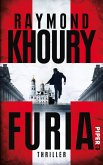 Furia / Sean Reilly Bd.1 (eBook, ePUB)