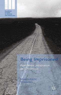 Being Imprisoned (eBook, PDF)