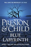 Blue Labyrinth (eBook, ePUB)
