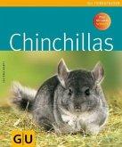 Chinchillas (Mängelexemplar)