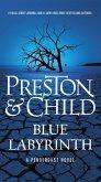 Blue Labyrinth (eBook, ePUB)