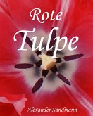 Rote Tulpe (eBook, ePUB)