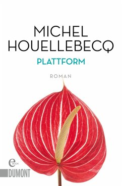 Plattform (eBook, ePUB)