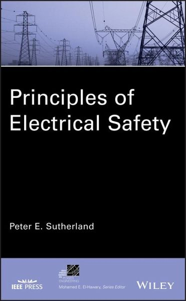 Principles of Electrical Safety (eBook, PDF)