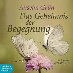 Das Geheimnis der Begegnung, 1 Audio-CD - Grün, Anselm