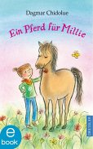 Ein Pferd für Millie / Millie Bd.24 (eBook, ePUB)