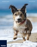 Mein Hund (eBook, ePUB)