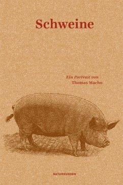 Schweine - Macho, Thomas