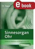 Sinnesorgan Ohr (eBook, PDF)