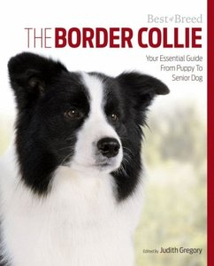 The Border Collie: Your Essential Guide from Puppy to Senior Dog - Gregory, Judith