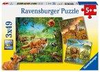 Ravensburger 09330 - Tiere der Erde, Puzzle 3x49 Teile