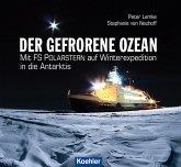 Der gefrorene Ozean (eBook, ePUB)