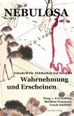 Wahrnehmung und Erscheinen (eBook, PDF)