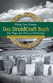 Das DruidCraft Buch (eBook, ePUB)