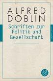Schriften zur Politik und Gesellschaft (eBook, ePUB)