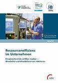 Ressourceneffizienz im Unternehmen (eBook, PDF)