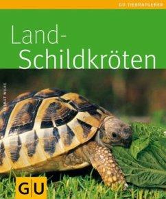 Landschildkröten (Mängelexemplar)