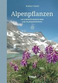Alpenpflanzen