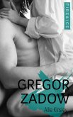 Gregor Zadow / Fire&Ice Bd.6.5 (eBook, ePUB)
