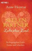 Seelenpartner - Liebe ohne Limit (eBook, ePUB)
