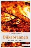 Biikebrennen (eBook, ePUB)