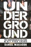 Underground: The Subterranean Culture of DIY Punk Shows