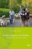 In den Fußspuren des Buddha (eBook, ePUB)