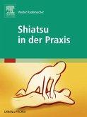 Shiatsu in der Praxis (eBook, ePUB)