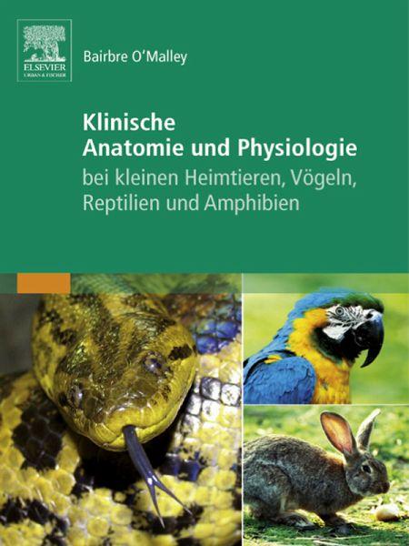 Klinische Anatomie und Physiologie bei kleinen Heimtieren, Vögeln ...