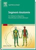 Segment-Anatomie (eBook, ePUB)