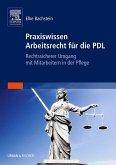 Praxiswissen Arbeitsrecht für die PDL (eBook, ePUB)