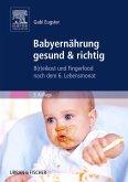 Babyernährung gesund & richtig (eBook, ePUB)