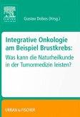 Integrative Onkologie am Beispiel Brustkrebs (eBook, ePUB)