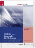 Kommunale Schuldenbremse, Innovative Ansätze zur Schuldenkonsolidierung in deutschen Kreisen und Gemeinden