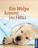Ein Welpe kommt ins Haus (eBook, ePUB)