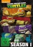 Teenage Mutant Ninja Turtles - Complete Season 1 Collection DVD-Box