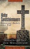 Hinter Sandsteinmauern (eBook, ePUB)