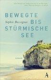 Bewegte bis stürmische See (eBook, ePUB)