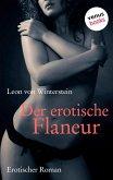 Der erotische Flaneur (eBook, ePUB)