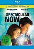 The Spectacular Now - Im Hier und Jetzt