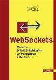 WebSockets (eBook, PDF)